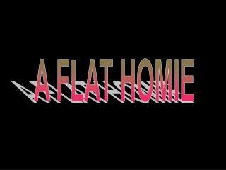 A FLAT HOMIE