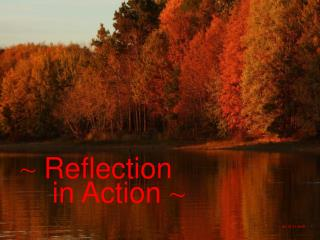 ~  Reflection      in Action  ~