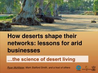 How deserts shape their networks: lessons for arid businesses