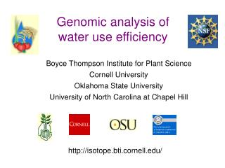 Genomic analysis of water use efficiency