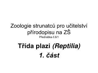 Zoologie strunatců pro učitelství přírodopisu na ZŠ Přednáška č.6/1