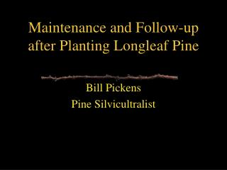 Maintenance and Follow-up after Planting Longleaf Pine