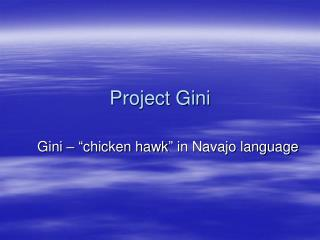 Project Gini