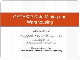 CSCE822 Data Mining and Warehousing