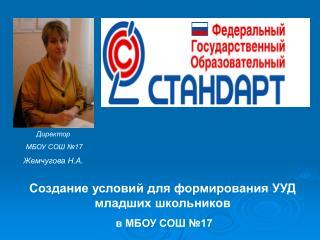Создание условий для формирования УУД младших школьников  в МБОУ СОШ №17