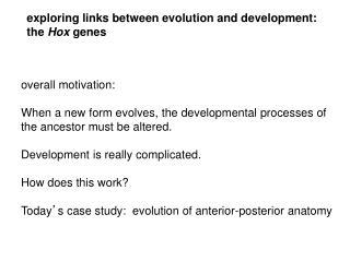 exploring links between evolution and development:  the  Hox  genes