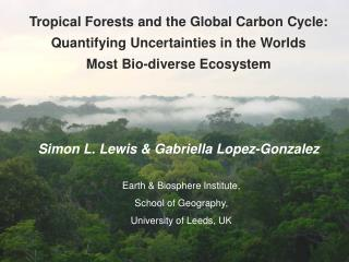 Tropical Forests and the Global Carbon Cycle: Quantifying Uncertainties in the Worlds