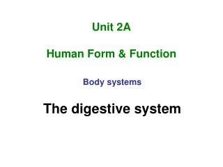 Unit 2A Human Form & Function