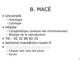 B. MAC