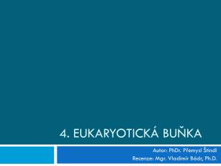 4. Eukaryotická buňka
