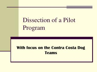 Dissection of a Pilot Program