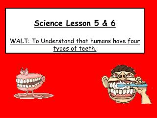 Science Lesson 5 & 6  WALT: To Understand that humans have  four  types of teeth.