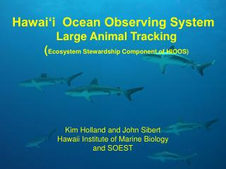 Hawai�i  Ocean Observing System