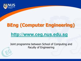 BEng (Computer Engineering)