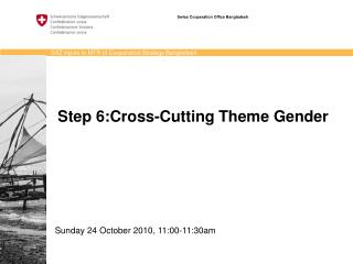 Step 6:Cross-Cutting Theme Gender