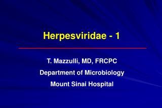 Herpesviridae - 1