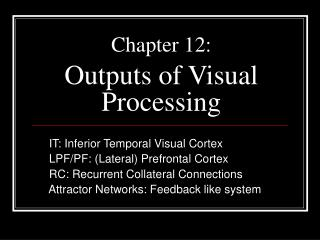 Chapter 12: Outputs of Visual Processing