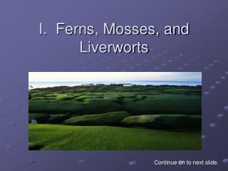 I.  Ferns, Mosses, and Liverworts
