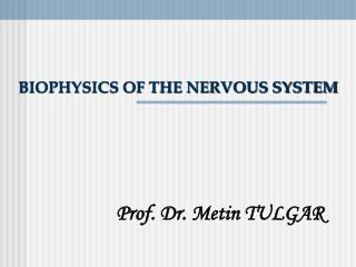 BIOPHYSICS OF THE NERVOUS SYSTEM
