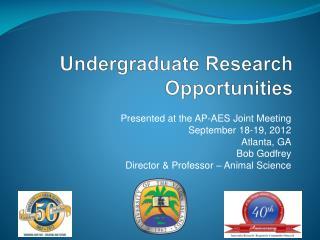 Undergraduate Research Opportunities