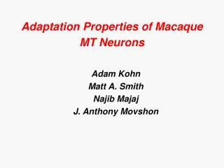 Adaptation Properties of Macaque MT Neurons