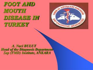 FOOT AND MOUTH DISEASE IN TURKEY