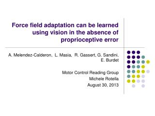 Force field adaptation can be learned using vision in the absence of proprioceptive error