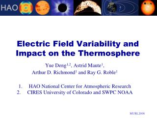 Electric Field Variability and Impact on the Thermosphere