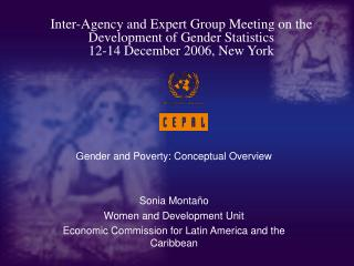 Gender and Poverty: Conceptual Overview Sonia Montaño Women and Development Unit