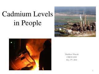 Cadmium Levels in People
