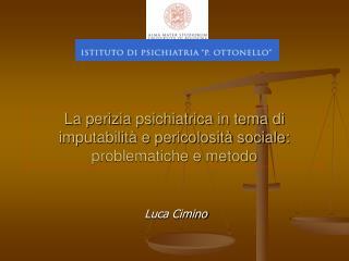 La perizia psichiatrica in tema di imputabilità e pericolosità sociale: problematiche e metodo