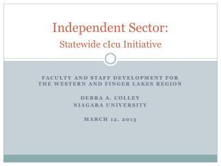 Independent Sector:   Statewide  cIcu  Initiative