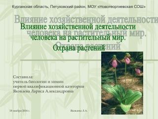 Курганская область, Петуховский район, МОУ «Новогеоргиевская СОШ»