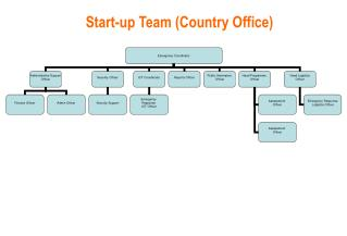 Start-up Team (Country Office)