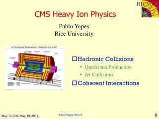 CMS Heavy Ion Physics