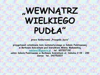 WYSTĘPUJĄ: (członkowie kółka matematycznego w Szkole Podstawowej w Borkowie Kościelnym)