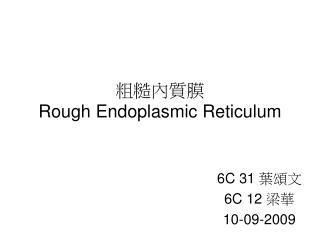 粗糙內質膜 Rough Endoplasmic Reticulum