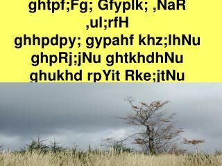 ghtpf;Fg; Gfyplk; ,NaR ,ul;rfH ghhpdpy; gypahf khz;lhNu ghpRj;jNu ghtkhdhNu  ghukhd rpYit Rke;jtNu