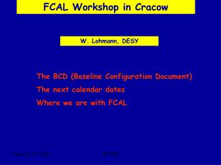 FCAL Workshop in Cracow