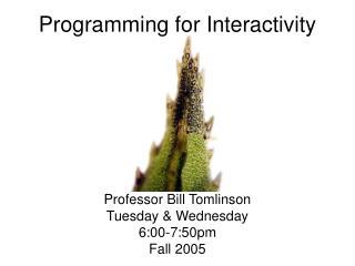 Programming for Interactivity