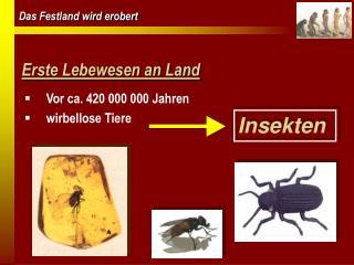 Erste Lebewesen an Land