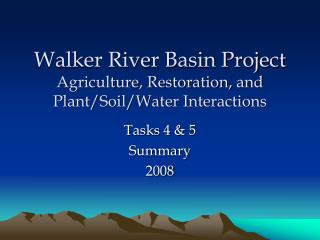 Walker River Basin Project Agriculture, Restoration, and Plant/Soil/Water Interactions