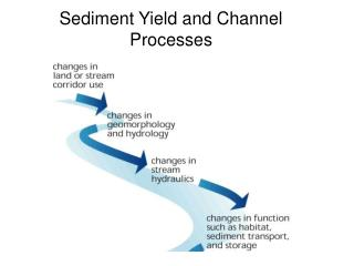 Sediment Yield and Channel Processes