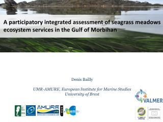 Denis  Bailly UMR-AMURE, European Institute for Marine Studies University of Brest
