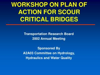 WORKSHOP ON PLAN OF ACTION FOR SCOUR CRITICAL BRIDGES