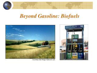 Beyond Gasoline: Biofuels