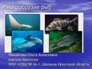 Многообразие рыб