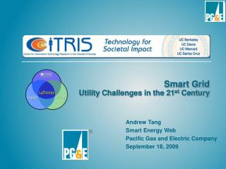 Smart Grid Utility Challenges in the 21 st  Century