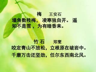 梅 王安石 墙角数枝梅, 凌寒独自开。 遥知不是雪 ,为有暗香来。