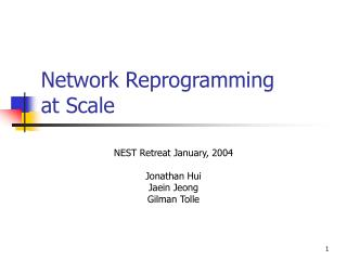 Network Reprogramming at Scale